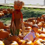 A child's view of life and having fun is so simple..........Pumpkin Patch, New Braunfels Texas - October 2014